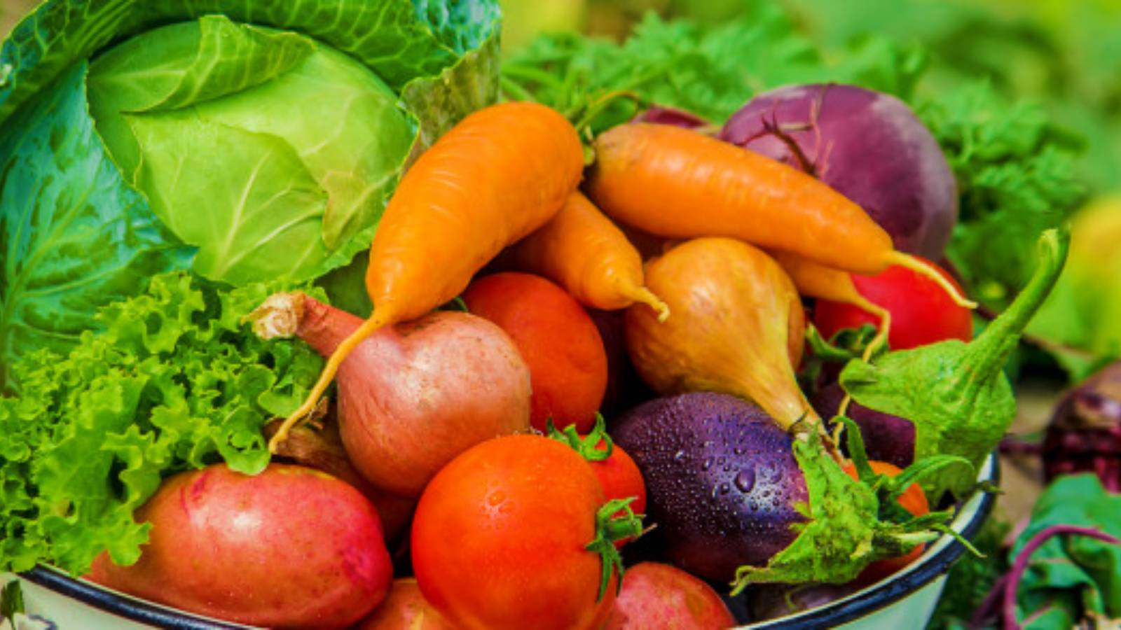diferentes-hortalizas-bio-foto-naturaleza-alimentos_73944-7497
